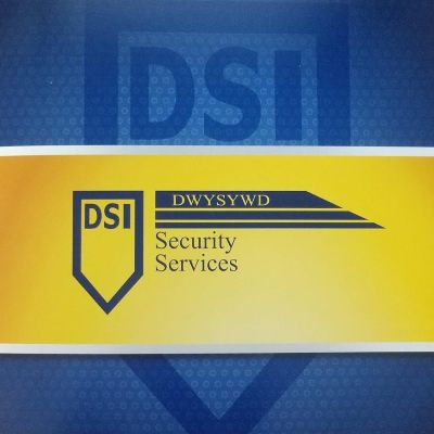 How Much Does Dsi Security Services Pay Indeed Com
