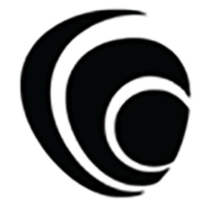 Лого компании Baker Tilly Virchow Krause