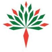PP International School logo