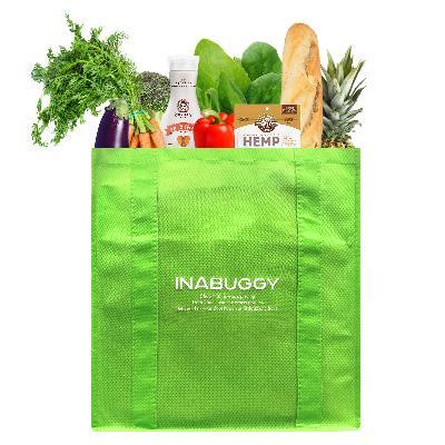 Logo INABUGGY