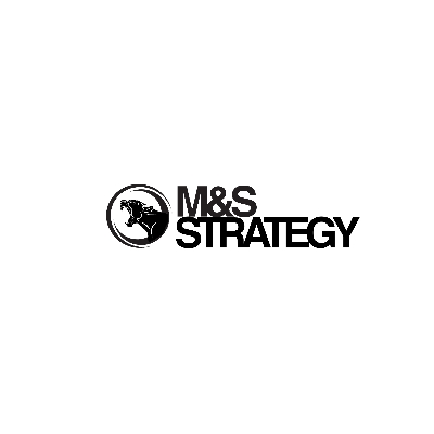Logo MS STRATEGY