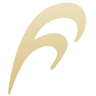 フランス総合医療株式会社のロゴ