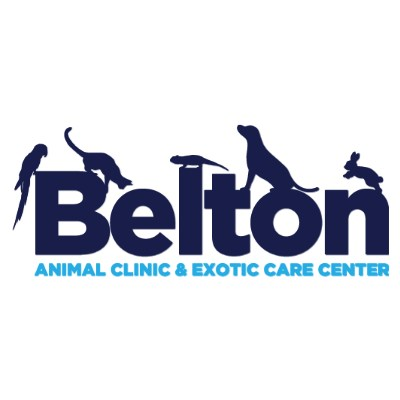 Belton Animal Clinic and Exotic Care Center Careers and