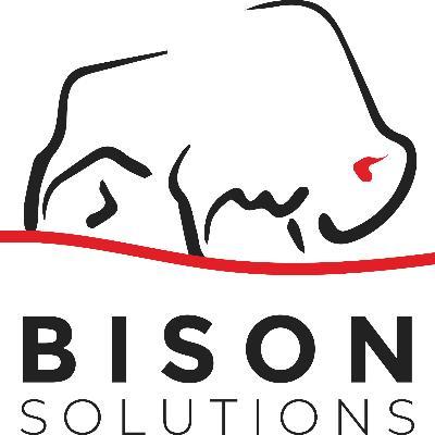 BISON SOLUTIONS LTD. logo