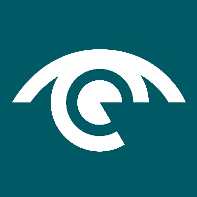 Radian Group Limited logo
